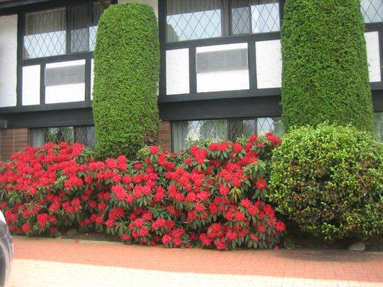 BEST WESTERN PLUS Abercorn Inn: Abercorn Inn