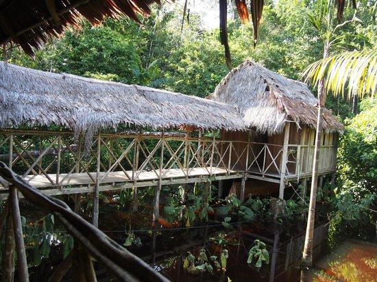 Abundancia Amazon Eco Lodge : walkway between buildings