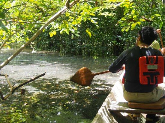 Abundancia Amazon Eco Lodge : paddling through magic forests
