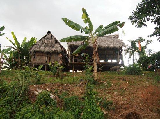 Abundancia Amazon Eco Lodge: visit to the nearby village