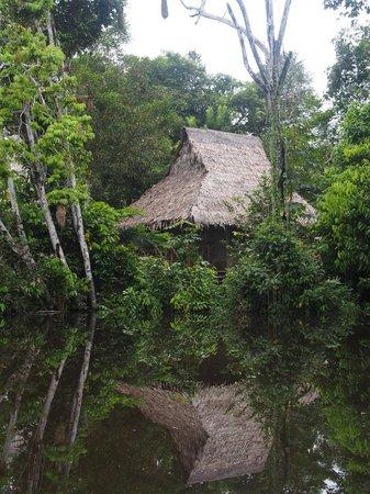 Abundancia Amazon Eco Lodge : the room from a canoe