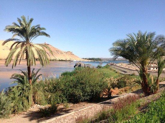 Movenpick Resort Aswan : vista das áreas do hotel