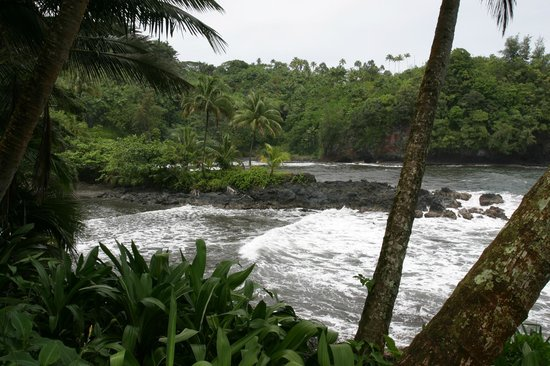 Hawaii Tropical Botanical Garden : Lovely cove at the bottom of the trail