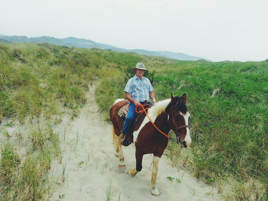 Green Acres Beach & Trail Rides : Titan.  Beautiful horse