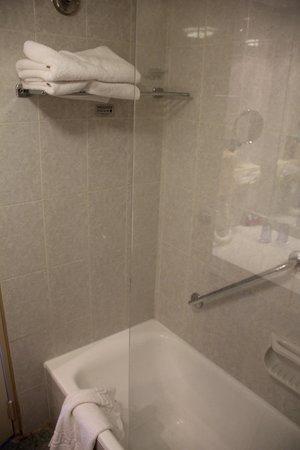 Crowne Plaza Hotel Jerusalem: bathroom n1