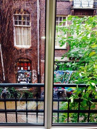 Truelove Guesthouse : Vista dall'appartamento, è più tranquillo di come sembra!