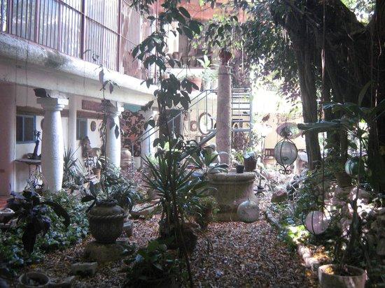 Hotel Trinidad Galeria: Jardim Interno