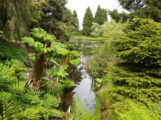 VanDusen Botanical Garden: What a view !.