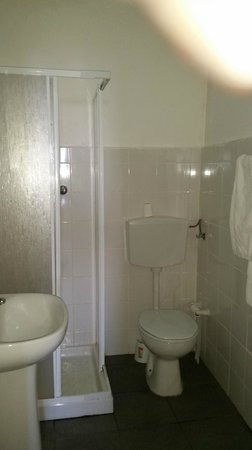 Apartamentos Turisticos Regina : bathroom
