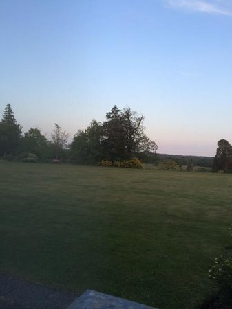 Buxted Park Hotel: a room with a view.
