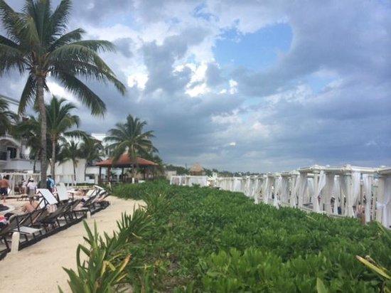 The Royal Playa del Carmen: Beautiful view