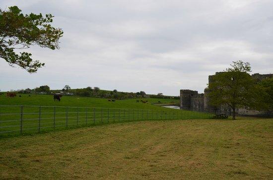 Beaumaris Castle: castelo