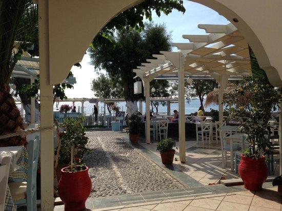 Sea Side Beach Hotel : Enjoying the view