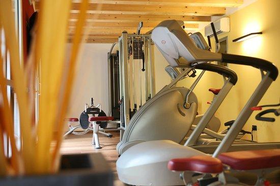Wellness Hotel Casa Barca: fitness
