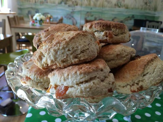 Folly Lake Cafe: Apricot scones