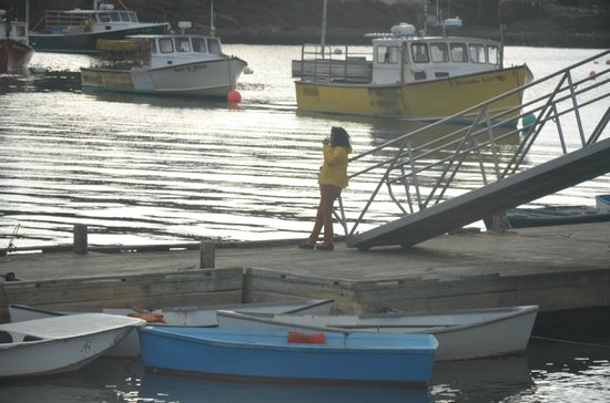 MainStay Cottages & RV Park: The harbour at Winter Harbor