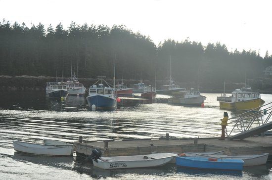 MainStay Cottages & RV Park: The harbor at Winter Harbor