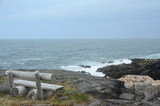 MainStay Cottages & RV Park: Driving around the Schoodic Loop in Winter Harbor