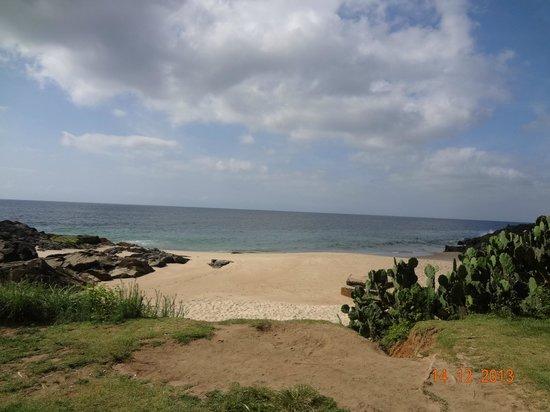 Mercure Salvador Rio Vermelho : praia