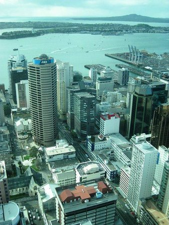 Sky Tower: View from the tower (one of the many)