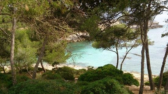 IBEROSTAR Club Cala Barca: the view