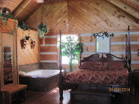 Smoky Mountain Lodging: bed and jacquzi