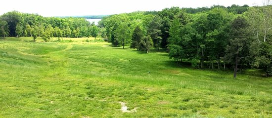 Gorgeous view of the Potomac River from the plateau behind Gunston Hall