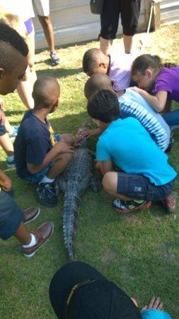 Kliebert's Turtle & Alligator Farm: Children petting a small gator