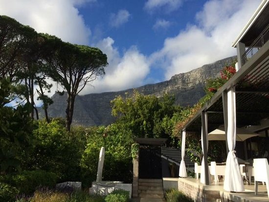 Kensington Place: View from the court yard looking up at Table Mountain.