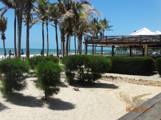 Oceani Beach Park Hotel: vista da praia e ao fundo do restaurante, durante o dia