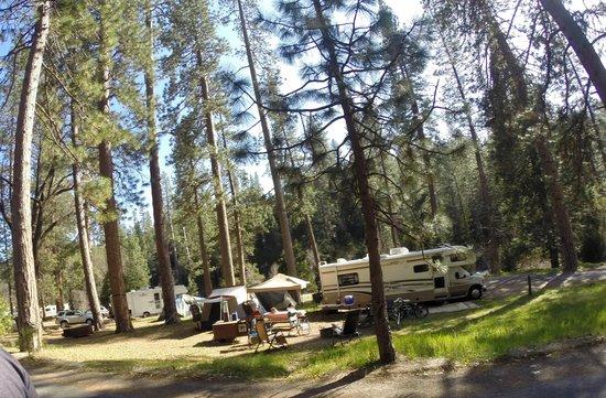 Wawona Campground: ALREDEDORES