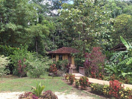 Sleeping Giant Lodge: Casitas1
