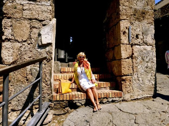 APTours Driver Tour Service : Pompeii Entrance