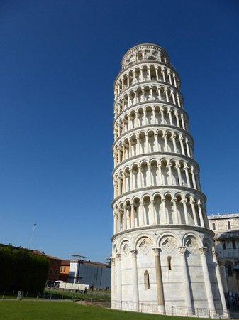 APTours Driver Tour Service: Pisa