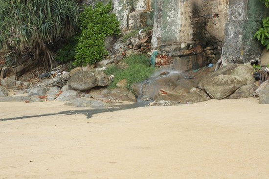 Mount Lavinia Hotel: Dark sludge on the beach