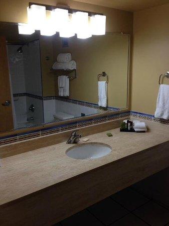 Embassy Suites by Hilton Dorado del Mar Beach Resort : Bathroom
