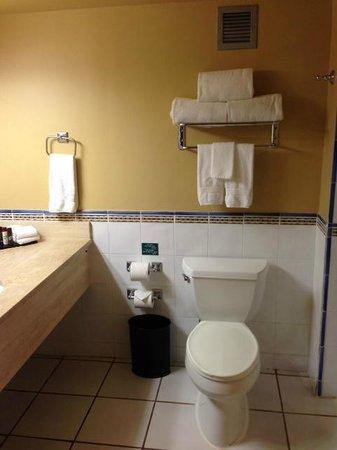 Embassy Suites by Hilton Dorado del Mar Beach Resort: Bathroom