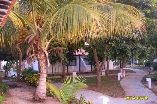Punta Blanca Hotel : zona habitaciones