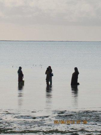 Sultan Sands Island Resort: Kiwengwa Beach 2