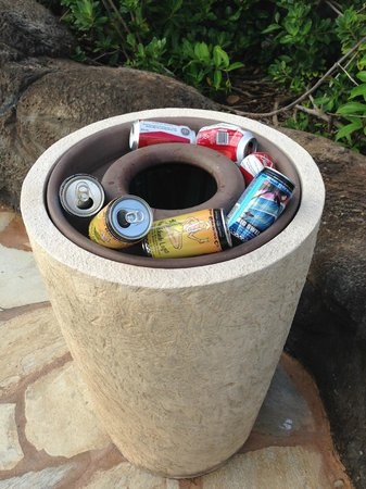 Marriott's Maui Ocean Club  - Lahaina & Napili Towers : Garbage Can Not Picked Up