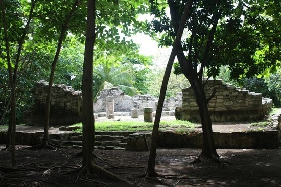 Museo Maya de Cancun: Nestled in a tropical forest