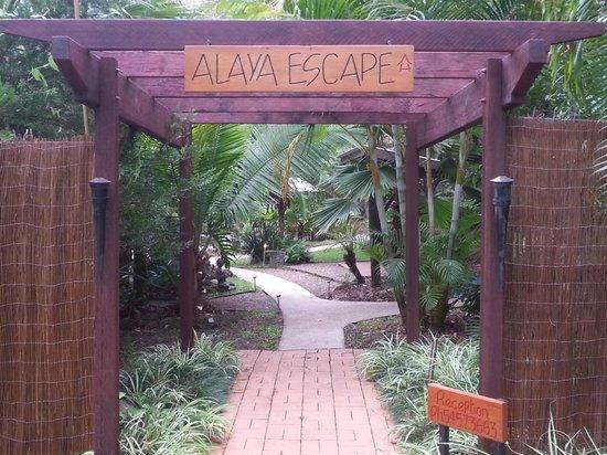 Alaya Escape Entrance