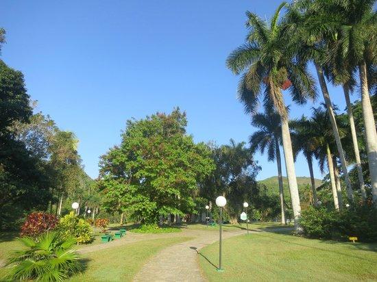Villa Horizontes Soroa: Zones vertes