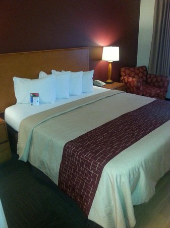Red Roof Inn Cedar Rapids : Very nice room!