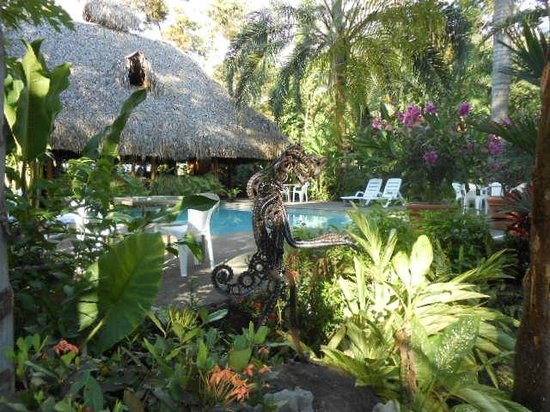 Hotel La Palapa Eco Lodge Resort: Costa Rica - Hotel La Palapa Ecolodge Resort