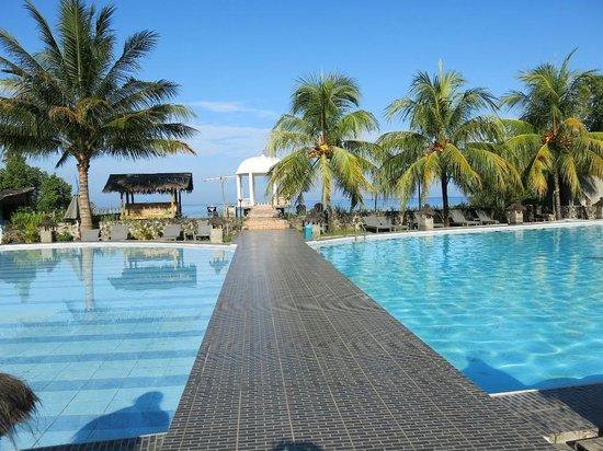 Thalassa PADI Dive Resort : Pool area