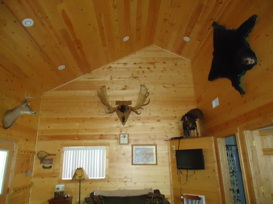 Pine Point Lodge : Family room of Gentle Ben Cabin
