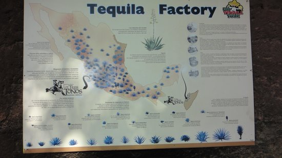 Free Tequila Tour By Casa Mission: Tequila Factory Map