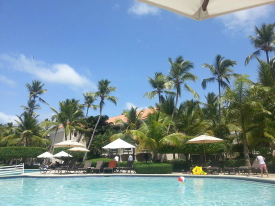 Dreams Palm Beach Punta Cana: this is the view from the pool