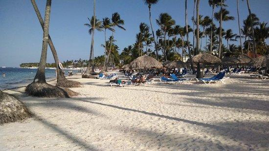 Dreams Palm Beach Punta Cana: this is on the beach